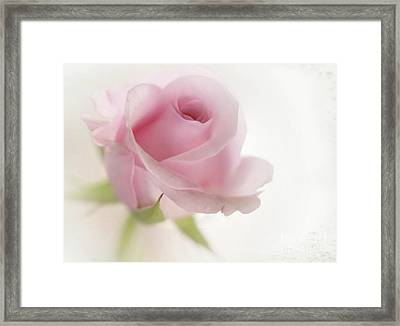 Candy Floss Framed Print