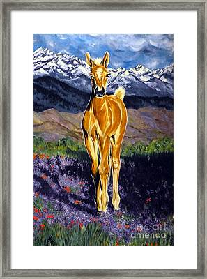 Candy Rocky Mountain Palomino Colt Framed Print