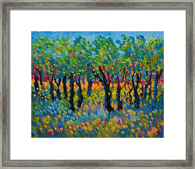 Candy Wood Framed Print
