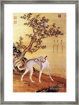 Cangshuiqiu - Royal Dog Framed Print