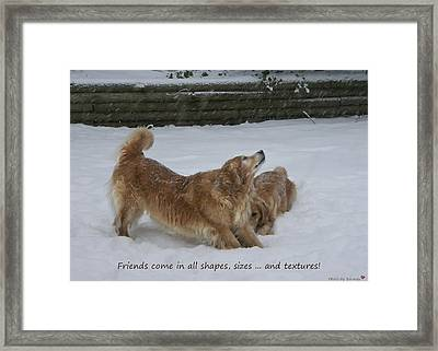Canine Friends Framed Print