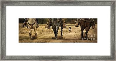 Canine Verses Equine Framed Print