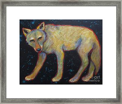 Canis Latrans  Framed Print by Carol Suzanne Niebuhr