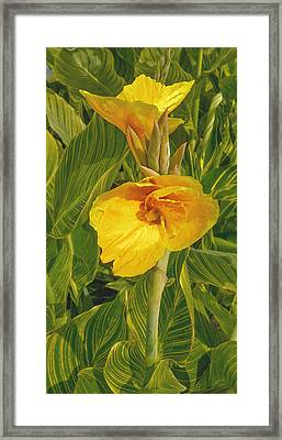 Framed Print featuring the photograph Canna Lily Artified by David Coblitz
