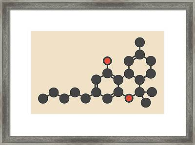Cannabis Drug Molecule Framed Print