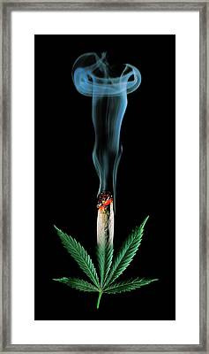 Cannabis Leaf And Burning Joint Framed Print by Stock Pot Images