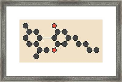 Cannabis Molecule Framed Print