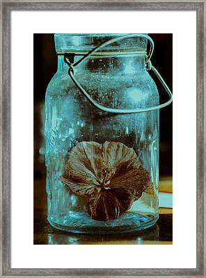 Canned Spring Framed Print by Susan Capuano