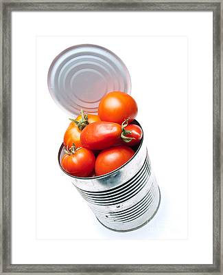 Canned Tomato Framed Print by Sinisa Botas