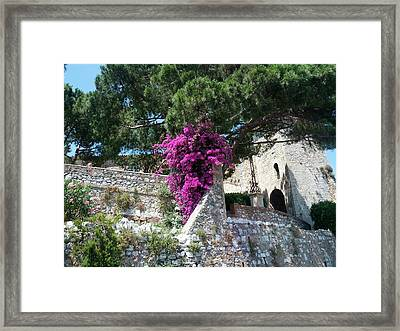 Cannes French Riviera I Framed Print by Shesh Tantry