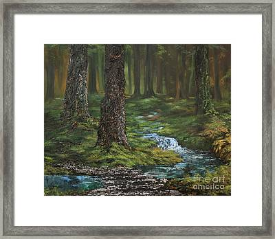 Cannock Chase Forest Framed Print by Jean Walker