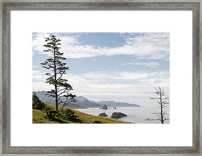 Cannon Beach At Ecola State Park Framed Print by David Gn