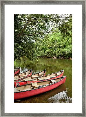 Canoeing The Macal River In Jungle Area Framed Print