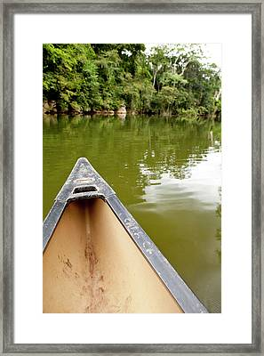Canoeing The Macal River In Jungle Framed Print