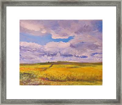 Canola And Clouds Framed Print