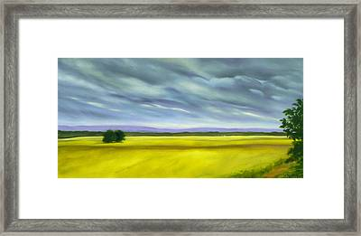 Framed Print featuring the painting Canola by Jo Appleby