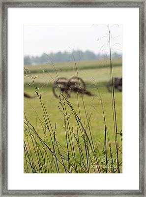 Canon In The Weeds Framed Print