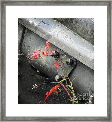 Canon Metal Framed Print by Randi Grace Nilsberg