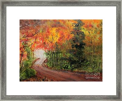 Canopy Of Colors Framed Print by Jack G  Brauer