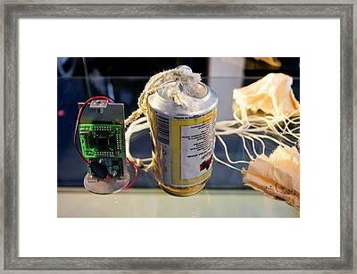 Cansat Framed Print by Mark Williamson