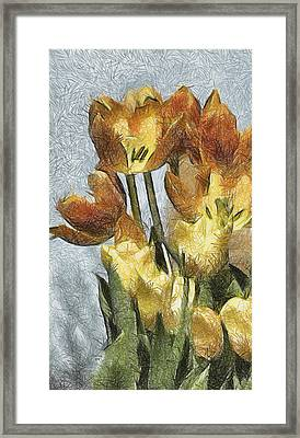 Can't Wait For Spring Framed Print by Trish Tritz