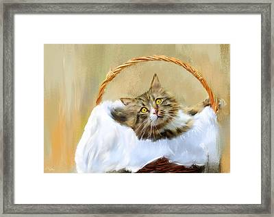 Can't You See I'm Comfy Framed Print by Lourry Legarde