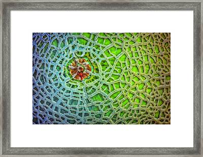 Cantaloupe Street Map Framed Print by Nikolyn McDonald