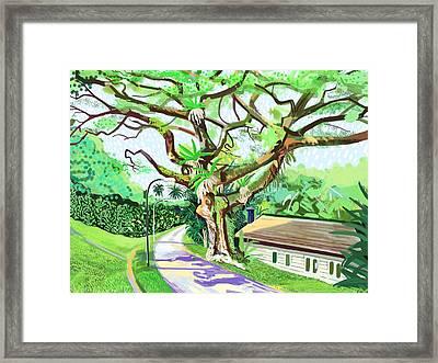 Canterbury Road Framed Print by Plum Ovelgonne