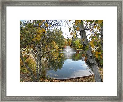 Framed Print featuring the photograph Cantigny Park by Teresa Schomig