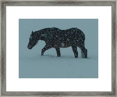 Can't..wait..till..spring..  Framed Print by Gerry Childs