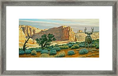 Canyon Country Buck Framed Print by Paul Krapf