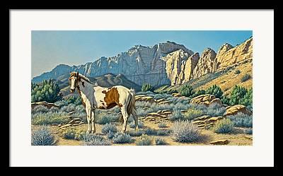 Zion Park Framed Prints