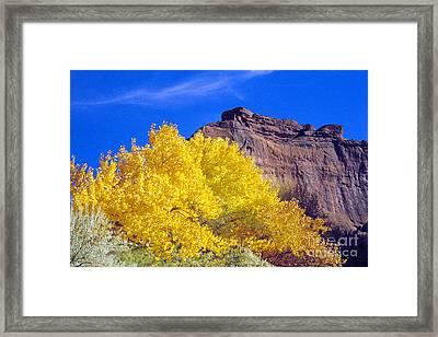 Canyon De Chelly Autumn    Framed Print by Douglas Taylor