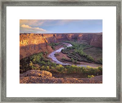 Canyon De Chelly Framed Print by Tim Fitzharris