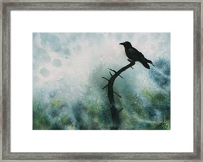 Canyon Denizen Or Torrey Pine Remains With Raven Framed Print