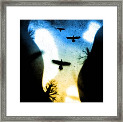 Canyon Flight Framed Print by Milton Thompson