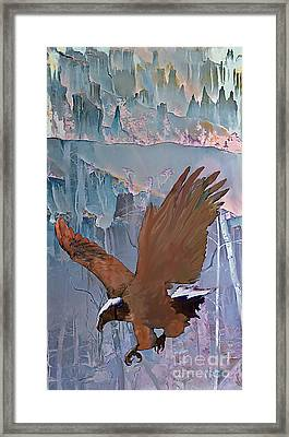 Canyon Flight Framed Print by Ursula Freer