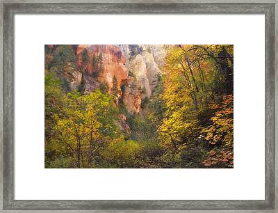 Canyon Kaleidoscope  Framed Print by Peter Coskun