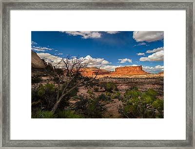 Canyon Lands Evening Framed Print by Michael J Bauer