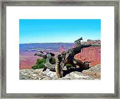 Canyon Lands National Park Framed Print by Susan Leggett