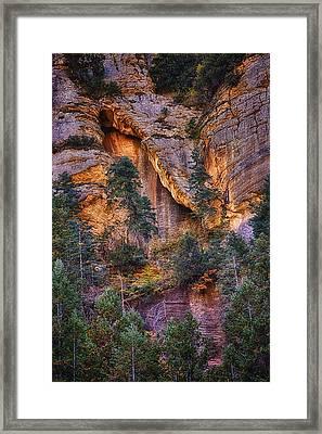 Canyon Light Framed Print