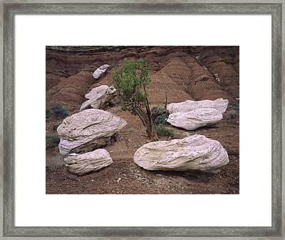 Canyon Pods Framed Print