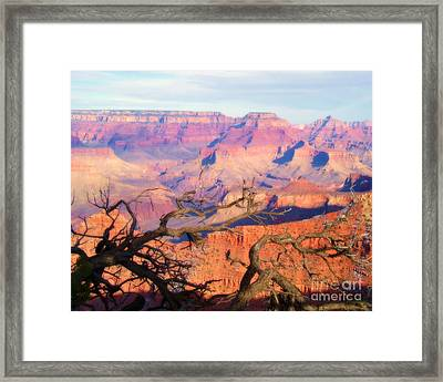 Canyon Shadows Framed Print by Janice Sakry