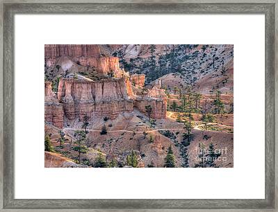Canyon Trails Framed Print