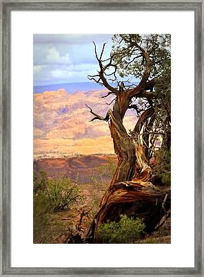 Canyon Vista 1 Framed Print by Marty Koch