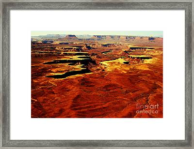 Canyonlands White Rim  Framed Print by Terry Johnson