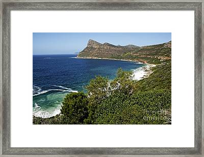 Cape And Cliffs Nearby Cape Point Framed Print by Sami Sarkis