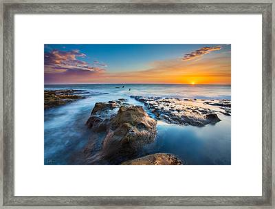 Cape Arago Orcas Framed Print by Robert Bynum