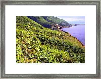 Cape Breton Highlands National Park Framed Print by Thomas R Fletcher