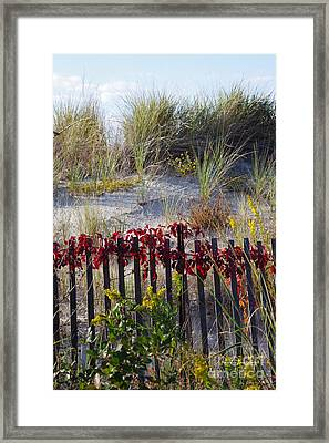 Cape Charles Autumn Framed Print